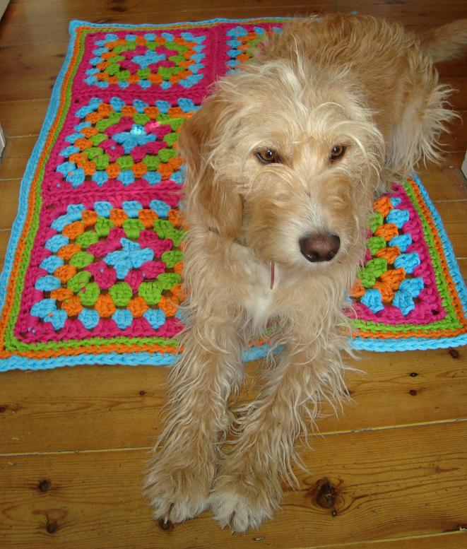 Hoopla Rug brights3